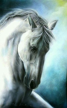 Horse art - title Elegance, in oil pastel - by Gile Pretty Horses, Horse Love, Beautiful Horses, Animals Beautiful, Beautiful Gorgeous, Horse Drawings, Animal Drawings, Art Drawings, Horse Artwork