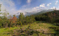 Ens endinsem en els boscos d'aquesta comarca per buscar fredolics, pinetells, camagrocs, múrgoles, rovellons i llenegues
