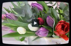 Enkla knepet – så gör du en snygg bordsdekoration av dina tulpaner - Sköna hem