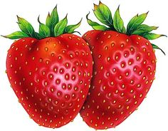 Strawberries are possibly the most irresistible and beautiful fruits. Everything about the strawberry be it color, texture or flavor is appealing which. Strawberry Bars, Strawberry Garden, Strawberry Plants, Strawberry Recipes, Strawberry Shortcake, Fruit Season Chart, Fruit In Season, Vegetables Garden