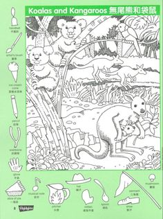 Koalas & Kangaroos Hidden Picture coloring page Hidden Object Puzzles, Hidden Picture Puzzles, Hidden Objects, Animal Activities, Color Activities, Kindergarten Activities, Activities For Kids, Hidden Images, Hidden Pictures