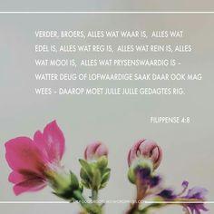Week 4 - FILIPPENSE VREUGDE IN OM TE GEE  - Memoriseervers Godly Woman