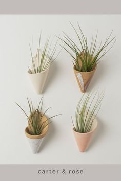 Carter & Rose wall planters are a great way to bring plant life and greenery to your home. We hand make each planter and love that the varying colors and styles can fit in with existing home decor. Garden Wall Planter, Ceramic Wall Planters, Large Planters, Ceramic Decor, Hanging Planters, Concrete Planters, Balcony Garden, Wall Plant Holder, Plant Wall