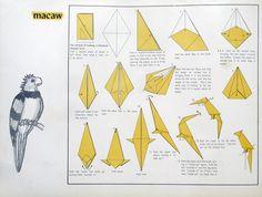 Evident Origami Folding