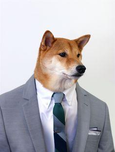 Exclusive First Look: Menswear Dog x The Tie Bar  #mensweardog #menswear #dog…