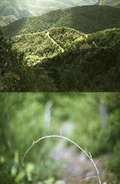 http://elpulpo.com.br/pb/compra/hide-out-02/ HIDE OUT 02_Este díptico faz parte do trabalho da fotógrafa catalã Ana Benavent, uma artista que desenvolve sua obra entre o celular e câmeras analógicas, buscando sempre desvelar nossas sensações a partir do banal que é o cotidiano.