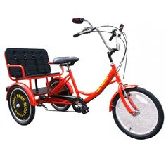 True Bicycles Family Transporter Special Needs Adult Tricycle that can carry three people Adult Tricycle, Electric Tricycle, 20 Wheels, Six Speed, Kids Seating, Wheel Cover, Back Seat, Child Safety, Cars