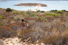 Необычная однодневная экскурсия на Сардинии. ОСТРОВ ТАВОЛАРА. Откройте для себя очаровательные пляжи, гранитные стены, пещеры и места для дайвинга. Italia
