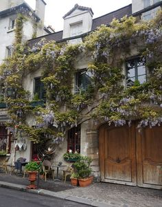 Cafe, Paris ~ And look at the wisteria!