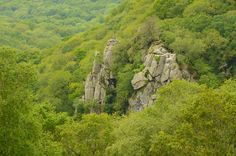 The Dewerstone Rocks in the Plym Valley