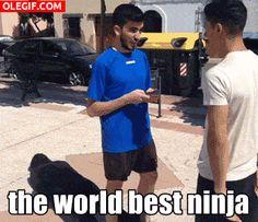 GIF: Un ninja ladrón