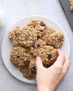 healthy cookies Healthy oatmeal cookies made with fiber-rich oats, coconut oil and applesauce instead of butter and coconut sugar. One cookie has about 115 calories! Naturally gluten-free and dairy-free. Healthy Oatmeal Cookies, Healthy Cookie Recipes, Oatmeal Cookie Recipes, Healthy Baking, Healthy Desserts, Gourmet Recipes, Oatmeal Cookies With Applesauce, Oatmeal Cookies Gluten Free, Oat Biscuits Healthy