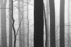 black and white photography landscape nature by NicholasBellPhoto, $50.00