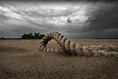 Rope in the sand along the Mississippi River above Baton Rouge, Louisiana, 2009 by John Guider