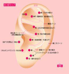 耳つぼマップ