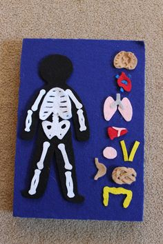 Image result for bones felt board
