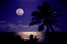"""""""Good night everyone and have a great night 😴😑🌕🌙🌃"""" Beautiful Places To Live, Beautiful Moon, Beautiful World, Cast A Love Spell, Love Spell That Work, Good Night Everyone, Have A Great Night, Great Pictures, Cool Photos"""