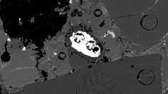 Hinweis auf große Mengen Wassereis: Forscher entdecken Opal in Meteorit