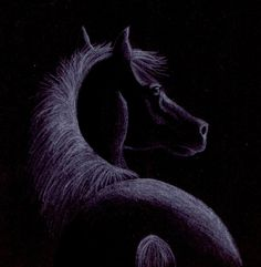 scetch on black paper by kittycat727