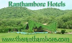 Ranthambore Hotels is just like the destination where you are able to spend your holidays with the greenery that spreads all around the cool and calm weather. This place is full of greenery and with the blossoms of flora & fauna.