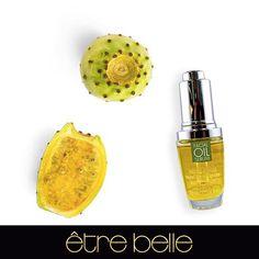 El Aceite Facial Esencial de Cactus de Tuna está especialmente indicado para pieles maduras para hidratar y nutrir la piel de rostro ayudando a la aceleración en la regeneración celular. Aceite Esencial ideal para combatir los signos de la edad.
