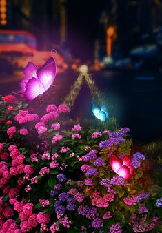 Spring is in the air. Butterflies and flowers are all over us bringing the spring in our cities! Photoshop edit by L'Arte. Butterflies, Cities, Photoshop, Spring, Creative, Flowers, Plants, Butterfly, Plant