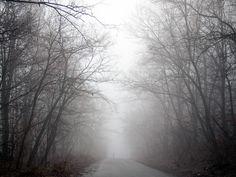 Love mist and fog.