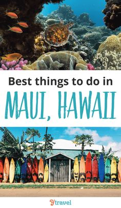 Best Things to Do in Maui on a Short Break The perfect itinerary for a quick trip to Hawaii. Here are the best things to do in Maui on a short break. Hawaii Travel Guide, Maui Travel, Travel Usa, Travel Destinations, Budget Travel, Travel Ideas, Travel Tips, Trip To Maui, Hawaii Vacation