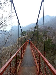 Suspension bridge on Mt. Daedun in Daejeon, Korea