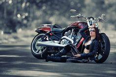 Motorcycles Wallpapers Harley Davidson Download HD 1920x1200 Wallpaper 37