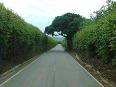 Estrada de Iperó-SP