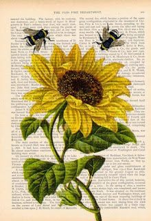 Gcse Art Sketchbook Title Page Natural Forms Trendy Ideas Bee Drawing, Bee Painting, Newspaper Art, Sunflower Art, Sunflower Images, Vintage Bee, Book Page Art, Arte Sketchbook, Bee Art