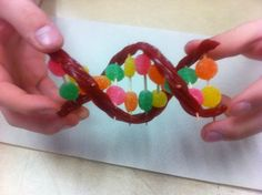 Using Candy to make a model of a Gene - a piece of DNA