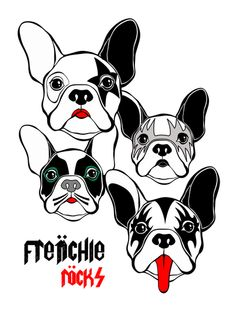 FRENCHIE ROCKS - BULLDOG » Leo Romeu