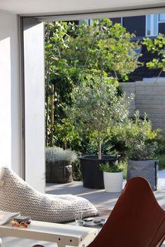 moderne Raum- und Outdoor Gestaltung für lässiges Ambiente