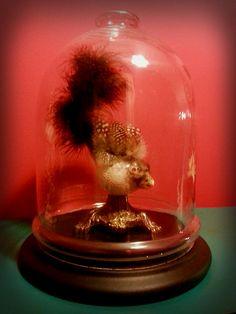 Gloria        Era un pesce.  Era piuttosto piccolo rispetto alla media della popolazione marina. Ma la natura gli aveva fatto un regalo: all...