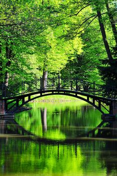 Serene green - footbridge in Pszczyna, southern Poland Poland History, Beautiful Places, Beautiful Pictures, Covered Bridges, Places To See, Serenity, Scenery, Around The Worlds, Photos