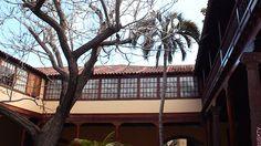 Que visiter à Tenerife ? Top 5 des choses à faire !