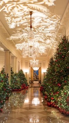 White House Christmas Decorations 2020 Tour 300+ Whitehouse Christmas ideas in 2020 | white house christmas