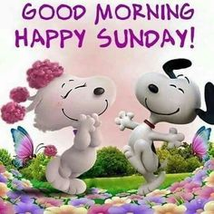 Have a good day and a good Sunday Have A Blessed Sunday, Good Morning Happy Sunday, Happy Sunday Quotes, Good Day Quotes, Funny Good Morning Quotes, Good Morning Sunshine, Good Morning Good Night, Happy Saturday, Happy Friday