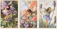 I wonder how many of you have heard of the beautiful Flower Fairies illustrations by Cicely Mary Barker? Recently, if you have been fol. Cicely Mary Barker, Vintage Fairies, Beautiful Fairies, Crystal Grid, Flower Fairies, Pink Lily, Be Kind To Yourself, Amethyst Crystal, Geraniums