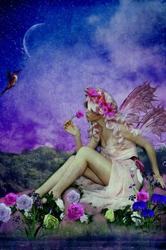 fairies pictures | Night Fairy of the Roses by = designdiva3
