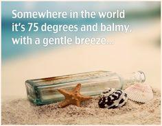 Beach...sand...sea shells...ocean... I'm there :) Beach Bum, Ocean Beach, Summer Beach, Summer Fun, Hello Summer, Ocean City, Beach Waves, Pomes, Beach Quotes