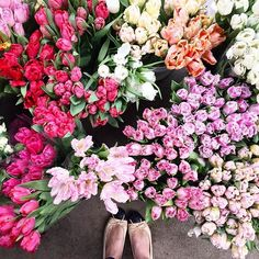 #brightlydecoratedlife tip: surround yourself with joy & colorful flowers