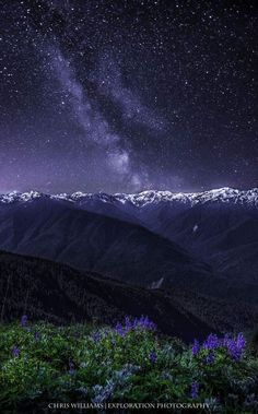 The Milky Way - Hurricane Ridge, Olympic National Park, WA