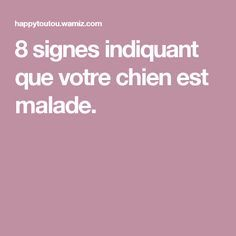 8 signes indiquant que votre chien est malade. Dogs, Advice, Dogs And Puppies, Animaux, Signs, Doggies, Dog Cat, Tips, Pet Dogs