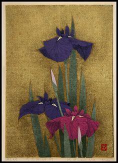 Sugiura Kazutoshi: Iris No 97 — 花菖蒲 No 97