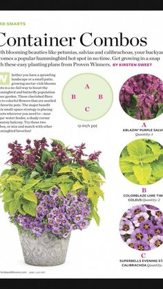 Container gardening, look up this gardening post demo number 9386578539 to preparing herbs in a container. Container Herb Garden, Container Gardening Vegetables, Container Flowers, Container Plants, Pond Design, Garden Design, Gardening For Beginners, Gardening Tips, Planting Plan