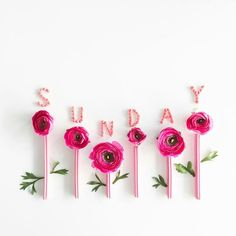 21 Best Ideas for flowers wallpaper quotes words Sunday Wishes, Happy Sunday Quotes, Blessed Sunday, Flower Words, Flower Quotes, Flower Logo, Flower Art, Art Flowers, Art Floral