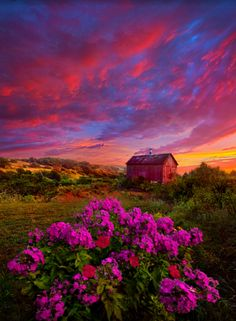 Live in The Moment…by Phil Koch